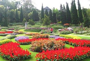 สวนแม่ฟ้าหลวง