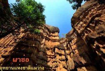 ผาช่อ (Grand Canyon Thailand)