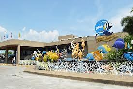 สถานีแสดงพันธุ์สัตว์น้ำระยอง