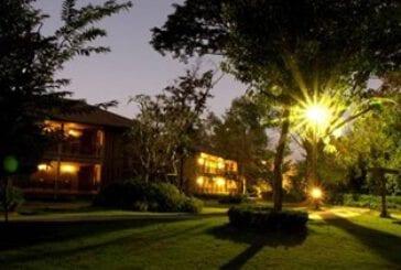 วิชชิ่ง ทรี รีสอร์ท (Wishing Tree Resort)