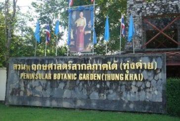 สวนพฤกษศาสตร์ทุ่งค่าย